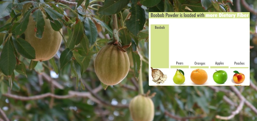 Natural Digestive Health – Baobab, a rich source of dietary fibre
