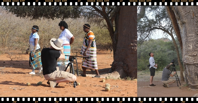 Making movies starring the baobab trees!