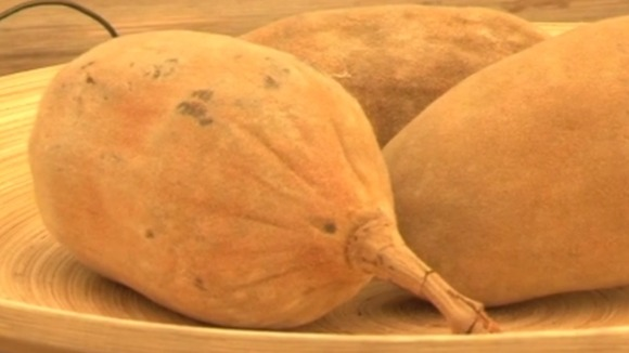 The Baobab – on British TV thanks to the Eden Project