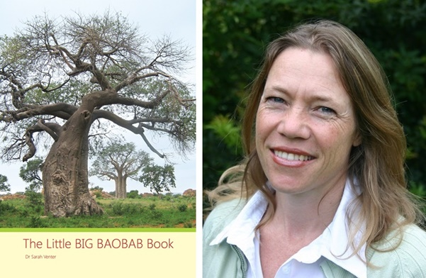 The Little BIG BAOBAB Book COVER with Sarah pic