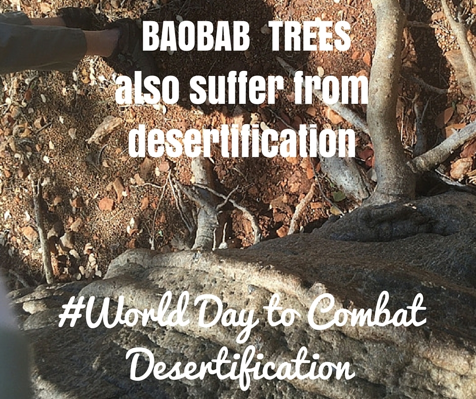 2016 Jun: World Desertification Day